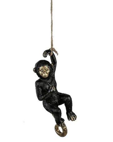 Hangende aap aan touw