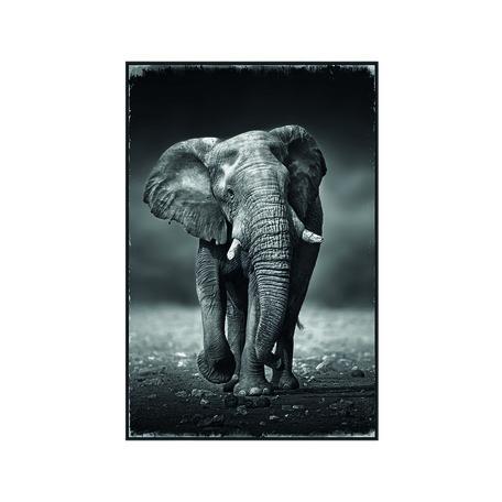 PTMD Melani Glass Art foto olifant rechthoek