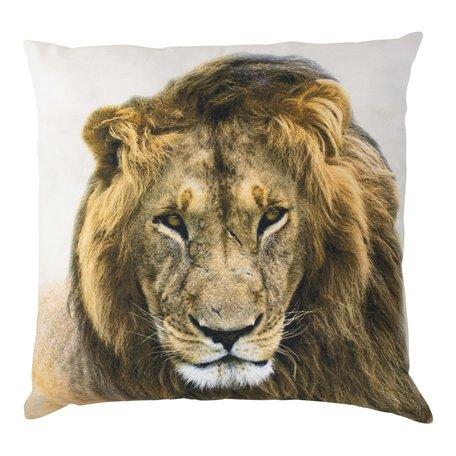 Canvas kussen leeuw 50x50cm
